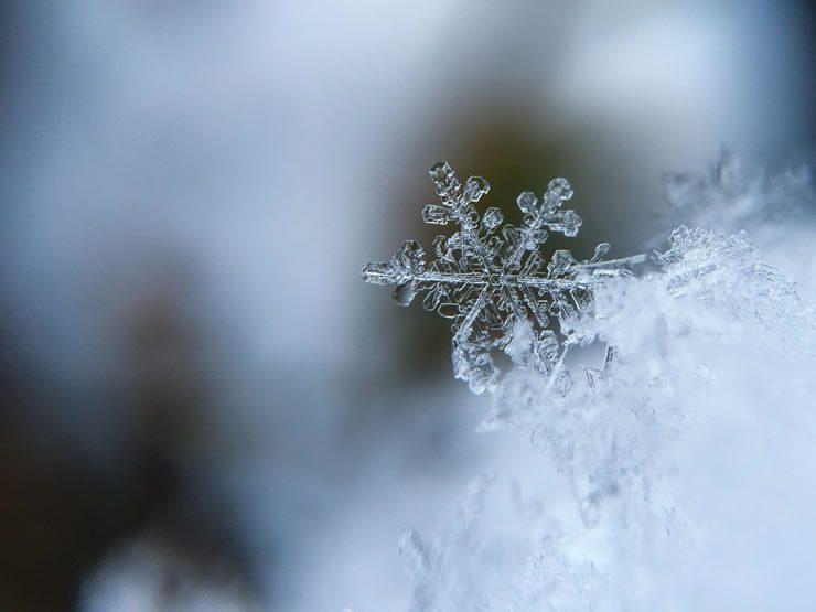 Carences hivernales
