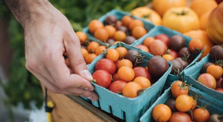 Casseaux de tomates