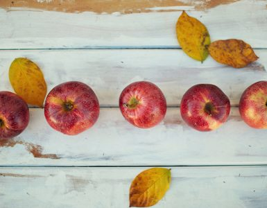 Vergers et pommes québec