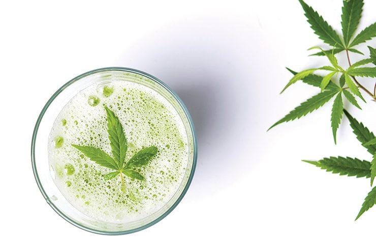 Cannabis alimentaire