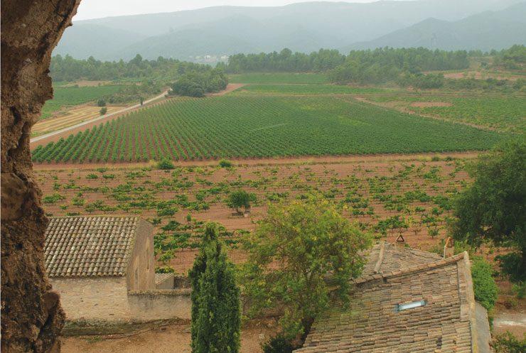 Espagne - Vin